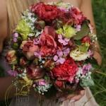 Harmonisches Farbzusammenspiel der Blüten