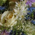 Rosen, Nigella, Allium und Scabiosen